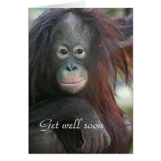 Orang utan get well card