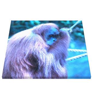 Orang Utan,purple blue Stretched Canvas Prints