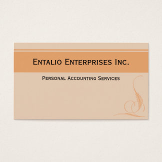 Orange Accent Professional Business Cards