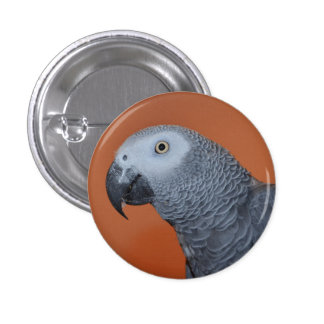 Orange African Grey Parrot Button / Badge