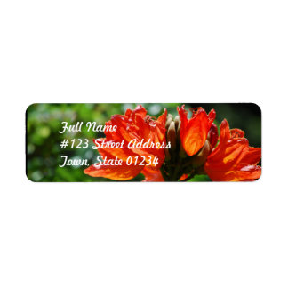 Orange African Tulip Tree Return Address Labels