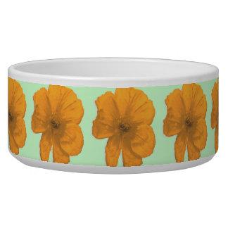 Orange Aid/ PopArt Flower Bowl