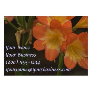 Orange Amaryllis Large Business Cards (Pack Of 100)