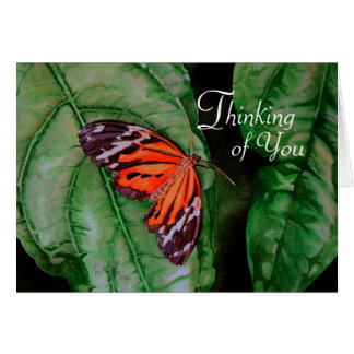 Orange and Black Brazilian Butterfly Greeting Card