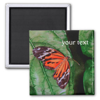 Orange and Black Brazilian Butterfly Magnet