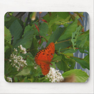 Orange and Black Butterfly at the Lake Mouse Pad