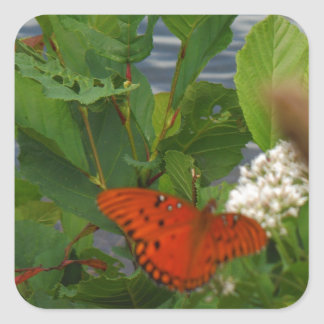 Orange and Black Butterfly at the Lake Square Sticker