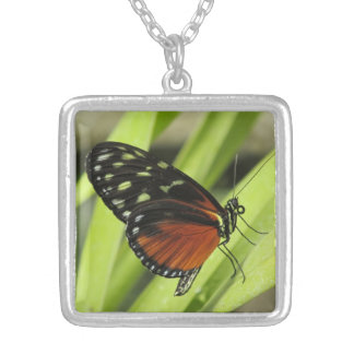 Orange and Black Butterfly Necklace