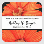 Orange and Black Double Daisies Wedding Collection Square Sticker