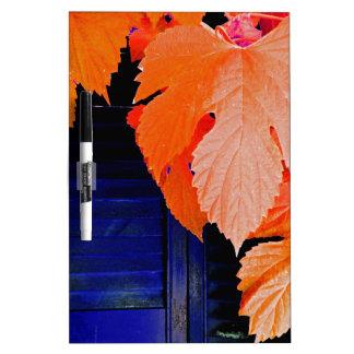 Orange and Blue Dry-Erase Whiteboards
