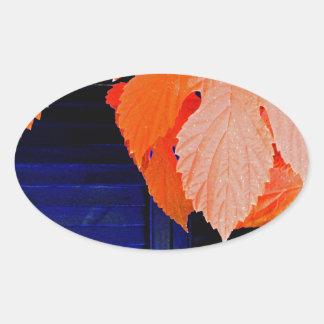 Orange and Blue Oval Sticker