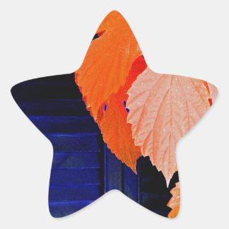 Orange and Blue Star Sticker