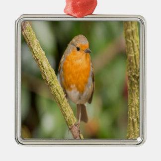 Orange and Brown Bird Metal Ornament