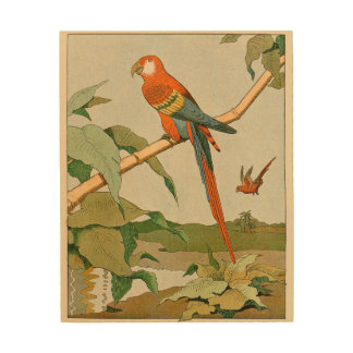 Orange and Brown Parrot Wood Wall Art