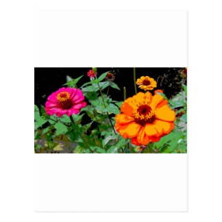 Orange and Pink Flowers Posterized Postcard