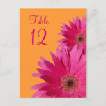 Orange and Pink Gerbera Daisy Table Number Card