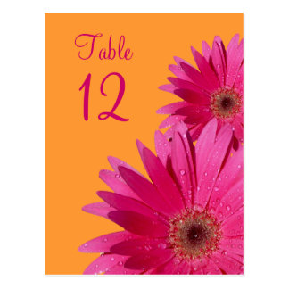 Orange and Pink Gerbera Daisy Table Number Card Post Card