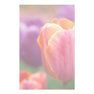 Orange and Pink Late Tulip Stationery