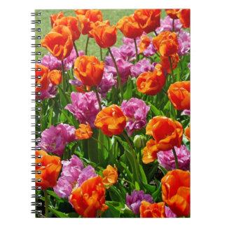 Orange and pink spring tulip garden notebook