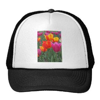Orange and Pink Tulips Trucker Hats