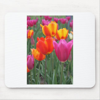 Orange and Pink Tulips Mouse Pad