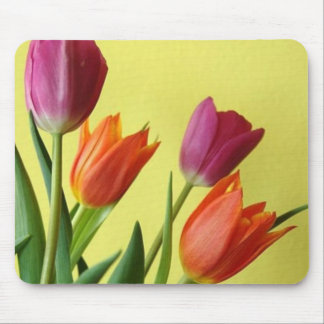 Orange and Purple Tulips Mouse Pad