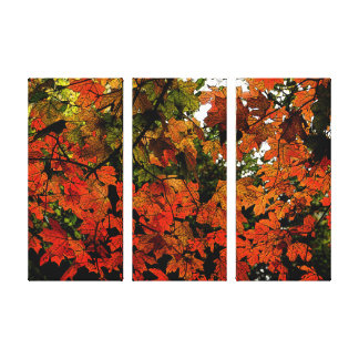 Orange and Red Autumn Leaves on Wrapped Canvas
