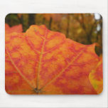 Orange and Red Maple Leaf Abstract Autumn Nature Mouse Pad