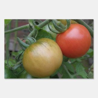 Orange and Red Tomatoes Custom Yard Sign