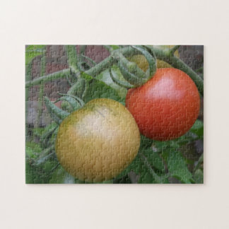 Orange and Red Tomatoes Puzzle