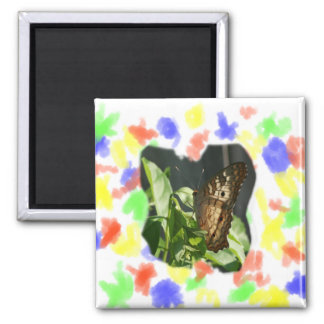 Orange and White Butterfly Photograph 2 Inch Square Magnet