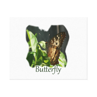 Orange and White Butterfly with text Photograph Canvas Prints