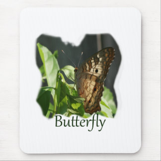 Orange and White Butterfly with text Photograph Mouse Pad