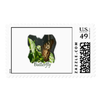 Orange and White Butterfly with text Photograph Postage Stamp