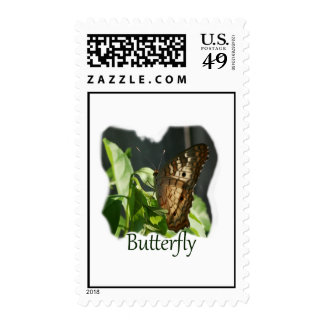 Orange and White Butterfly with text Photograph Stamp