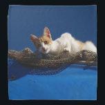 "Orange And White Cat Bandana<br><div class=""desc"">An orange and white cat decorates this lovely bandana</div>"