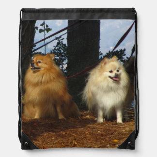 Orange and White Dogs Drawstring Bag