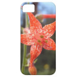 Orange and White Flower iPhone 5 Cases
