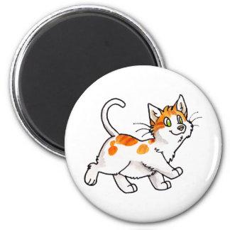 Orange and White Kitty Fridge Magnets