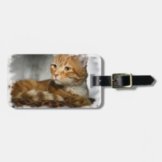 ORANGE AND WHITE TABBY CAT LUGGAGE TAG
