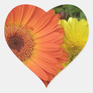 Orange and Yellow Crysanthemum Heart Sticker