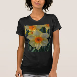 Orange and Yellow Daffodils T-Shirt