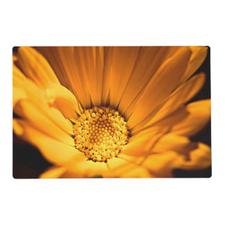 Orange and Yellow Daisy Placemat