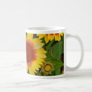 Orange and yellow echinacea flower print coffee mug