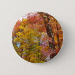 Orange and Yellow Fall Trees Autumn Photography Button