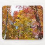 Orange and Yellow Fall Trees Autumn Photography Mouse Pad