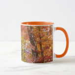 Orange and Yellow Fall Trees Autumn Photography Mug