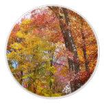 Orange and Yellow Fall Trees Ceramic Knob