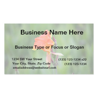 orange and yellow florida flower business card