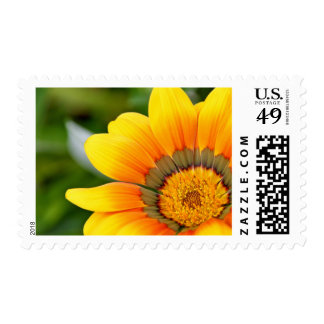 Orange and Yellow Flower $0.49 (1st Class 1oz) Postage Stamps
